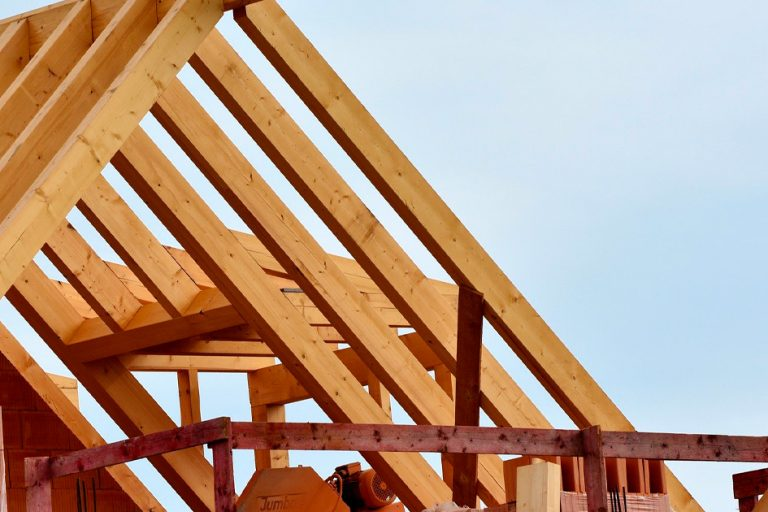 Edifici e case in legno - vantaggi e svantaggi